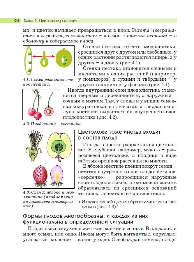 капустные и розоцветные.